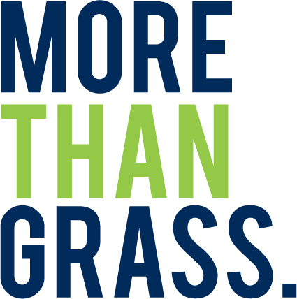 More Than Grass